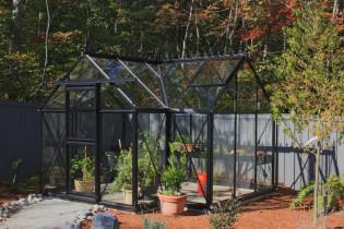 Overwinteren in de tuinkas: het hele jaar verse producten uit eigen tuin