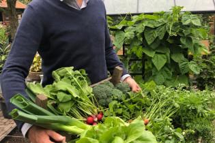 Marks moestuintip voor juli: wortel