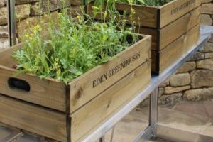 ACTIE: direct aan de slag in jouw tuinkas, met een gratis kweektafel